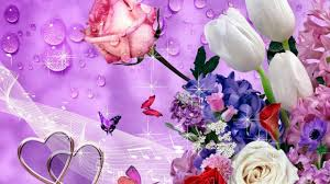 images of flowers flowers images free download beautiful flowers