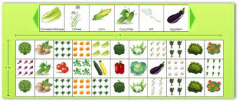 Companion Planting Garden Layout Planning A Garden Layout With Free Software And Veggie Garden Plans