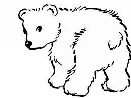items similar to polar bears printable coloring page instant polar