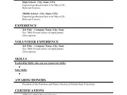 sle resume for college students philippines web developer resume exle emphasis expanded free exles by