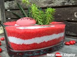 Valentine Decorating Ideas For Office by Succulent Dish Garden For Valentines Day Hometalk