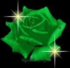 green roses green o significado do verde o significado do verde o verde