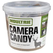 moultrie special offers cameras feeders and accessories