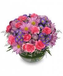 fresh flowers lavender mist fresh flowers in annandale va pink posey florist