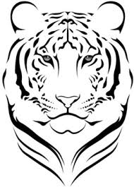 black tiger vector free vector 6 845 free vector for