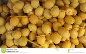 fresh dates fruit dates fresh dates palm dates stock photo image 51978669