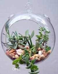 diy hanging planter vase with air plant kits glass globe succulent