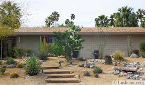 Desert Landscape Ideas For Backyards Desert Landscaping Ideas To Save Water And Create Low Maintenance