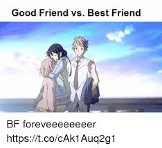 Good Friends Meme - 25 best memes about friend vs best friend friend vs best