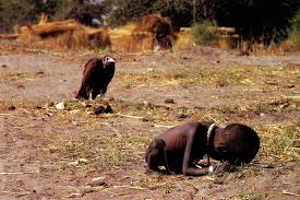 Starving Child Meme - the vulture and the little girl