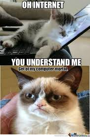 Internet Meme Cat - rmx cat and internet by caveman01 meme center