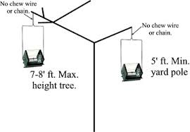 hanging picture height bird feeding tips by rollerfeeder