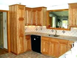 Kitchen Cabinet Doors Miami Reface Cabinet Doors Image Of Kitchen Cabinet Refacing Ideas Door