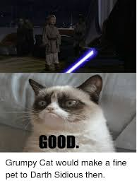Angry Cat Good Meme - good grumpy cat would make a fine pet to darth sidious then cats