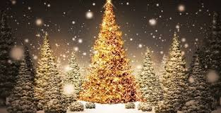outdoor christmas tree top 10 outdoor christmas light ideas