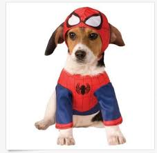 Cute Dog Halloween Costumes 25 Funny Dog Halloween Costumes Ideas