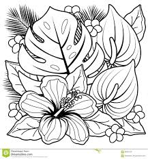 tropical plants and hibiscus flowers coloring book page stock