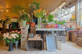 florist shop stock photos florist shop stock photography online