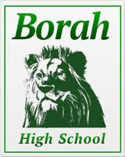 borah high school yearbook borah high school