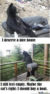 sad bear by marcoa84 meme center