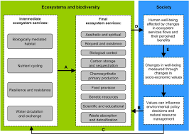 the ecosystem services framework for the example of deep sea