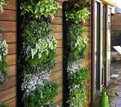 diy outdoor living wall planter create your own vertical garden