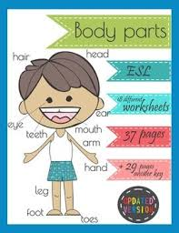175 best esl body parts images on pinterest body parts