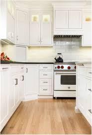 framed vs frameless cabinets luxury kitchen design framed v s frameless cabinets amber golob