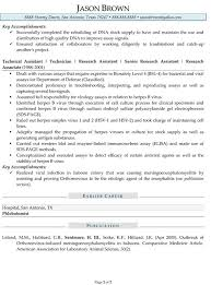 research scientist resume sle 28 images research scientist