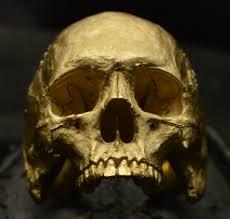 gold skull rings images Mid size half jaw 14k rose yellow gold skull ring jpg