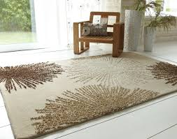 Braided Area Rugs Cheap Living Rooms Extraordinary Living Room Rugs For Braided Area