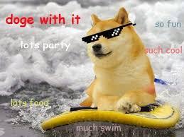131 best doge images on pinterest doge so funny and doge meme