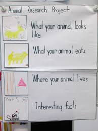 farm writing paper animal research project anchor chart for our farm unit before animal research project anchor chart for our farm unit before the pumpkin patch visit or