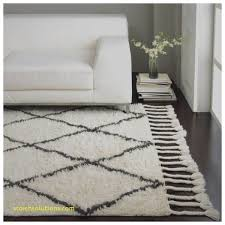 Plush Area Rugs 8x10 Area Rugs Best Of 8x10 Shag Area Rug 8x10 Shag Area Rug Best