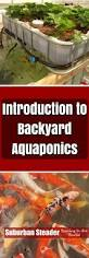 5269 best aquaponics system images on pinterest aquaponics