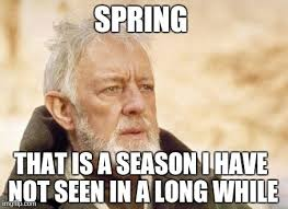 Thats Cool Meme - 15 funny spring memes to get you through these chilly spring days