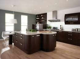 good kitchen paint colors with dark cabinets nrtradiant com