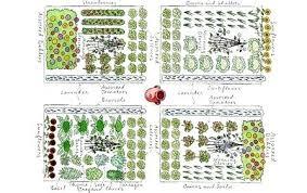 Garden Layout Software Vegetable Garden Plot Plan Ghanadverts Club