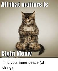 Inner Peace Meme - ali that matters is right meow canhaschee2burger com find your inner
