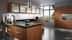 Modern And Fashionable Modular Kitchen Idea Design With Dark Wood - Glass shelves for kitchen cabinets