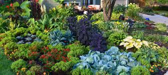 front yard gardens shawna coronado gardening with confidence