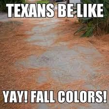 Texas Weather Meme - texas weather meme 28 images scumbag texas imgflip 25 best