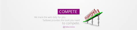 tailbase website development u0026 digital marketing for local