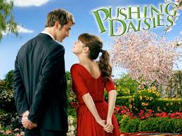 daisies film pushing daisies movies u0026 tv on google play