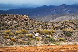 Tule Springs Fossil Beds National Monument 3 New Western National Parks And Monuments To Discover Takepart