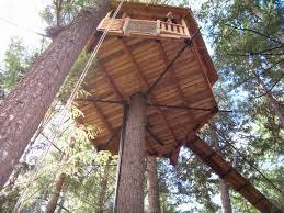 so you want to install a garnier limb treehouse tree houses