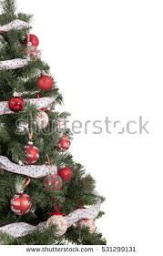 christmas tree isolated stock images royalty free images