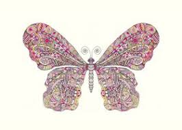 steel print illustration butterfly pink illustration drawing