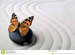 Image Zen Gratuite by Roche De Zen Avec Le Papillon Photos Stock Inscription Gratuite