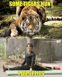 Tiger Meme - these memes prove why we need to save tiger shroff on